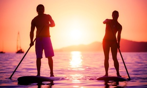 IpaddleMiami: Sunset Paddlboard Tour for Two, Four, or Six from IpaddleMiami (Up to 50% Off)