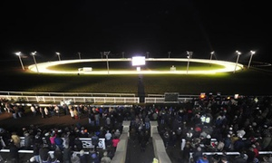 Towcester Racecourse: Greyhound Racing with Food, Drink, Programme and £2 Bet for Up to 15 People at Towcester Racecourse (Up to 61% Off)