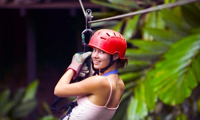 Adventureworks - Kingston Springs: Eco-Adventure Canopy Zipline Tour for Two or Four at Adventureworks (Up to 54% Off)