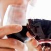 Half Off Michigan Wine Appreciation 101 Class for Two