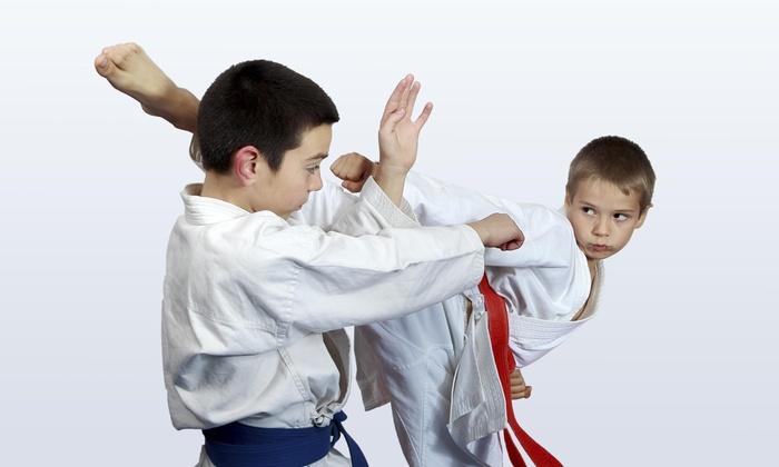 Hi-5 Childrens Activity Center - Warner Robins: 10 Karate Classes at Hi-5 Children's Activity Center (64% Off)