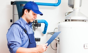 NY Water Heater Incorporated: $49 for a Water Heater Flush and Boiler Inspection from NY Water Heater Incorporated ($199 Value)