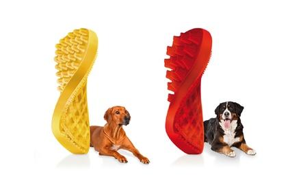 Pets Groupon