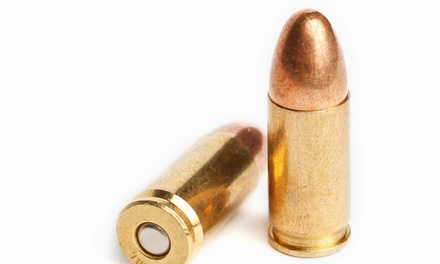 $80 for Pistol-Safety Course at CT Gun Permit ($165 Value)