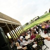 48% Off Concert Series at The Vineyard at Hershey