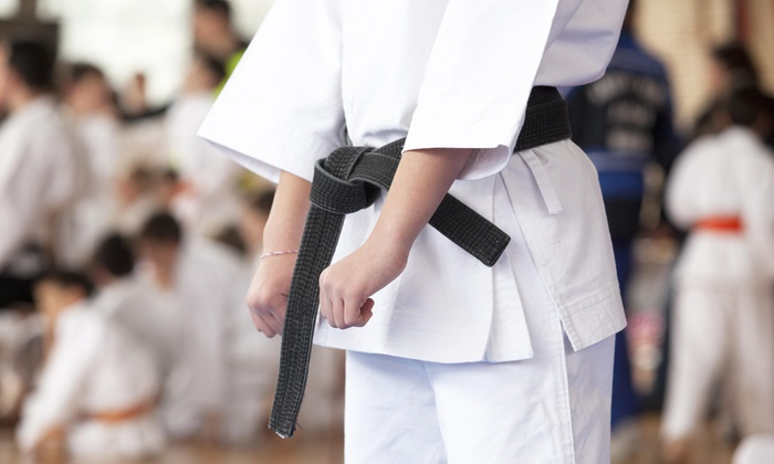 Karate America - Greenville - Greenville: Up to 73% Off One or Two Months of Karate at Karate America - Greenville