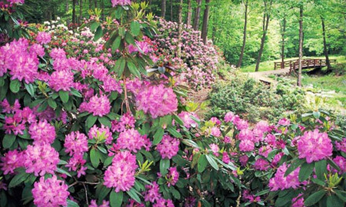 The Holden Arboretum - Kirtland: Visit for Two or Four to The Holden Arboretum in Kirtland (Up to Half Off)