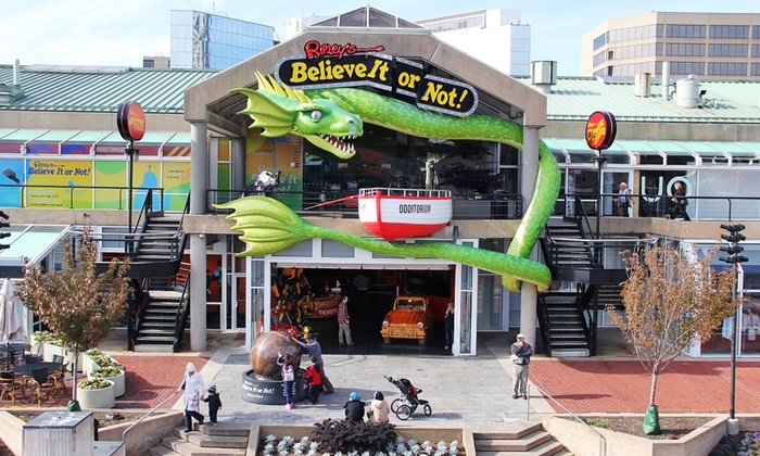 Things To Do In Baltimore Deals In Baltimore MD Groupon - 12 things to see and do in baltimore