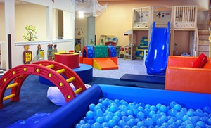 HappyNest Play Centers: Two All-Day Indoor-Playground Passes at HappyNest Play Centers (Up to 50% Off)