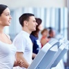 1 Monat Fitness Basic-Programm