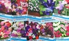 Nurseryman's Flower Seeds
