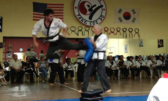 Fearless Taekwondo And Martial Arts - Weslake Village: Two Weeks of Unlimited Martial Arts Classes at Fearless Martial Arts (52% Off)