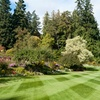 Up to 56% Off Lawn Mowing, Blowing and Trimming