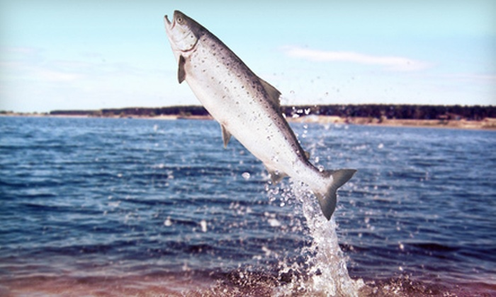 Let's Catch Fish Specialty Charters - Rochester: Four-Hour Guided Salmon-Fishing Trip for One, Two, or Six from Let's Catch Fish Specialty Charters (Up to 58% Off)