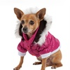Cold-Weather Dog Parka with Removable Hood