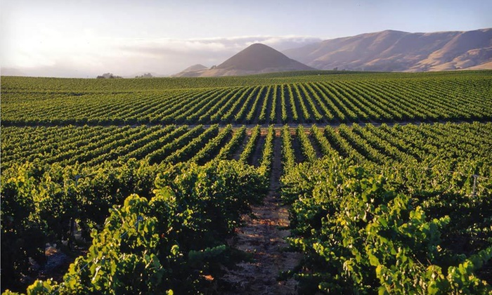 null - Los Angeles: Stay with Daily Wine Reception at Apple Farm Inn in San Luis Obispo, CA