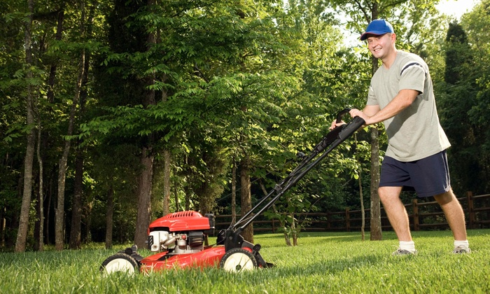 Let Us Love Your Lawn - Lithonia: $33 for $66 Groupon — Let US Love Your Lawn