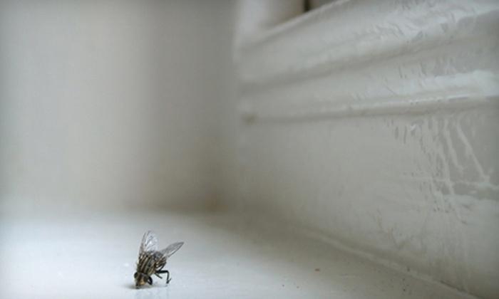 Magic Pest Control - Silverhawke: $50 Worth of Pest-Control Services
