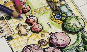AnMon Gardens: Projekt ogrodu z wizualizacją 2D i 3D: koncepcyjny (199,99 zł) lub wykonawczy (od 549,99 zł) w AnMon Gardens