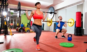 CrossFit EX: One-Month Membership for One or Two or One Month of 5K or 10K Training at CrossFit EX (Up to 58% Off)