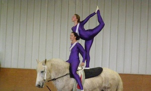 Two Rivers Vaulting Club: $24 for $48 Worth of Horseback Riding — Two Rivers Vaulting