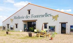 Miellerie des Fontenelles: Sensibilisation à l'apiculture : visite et dégustation pour 2 ou 4 personnes dès 19,90 € à la Miellerie des Fontenelles