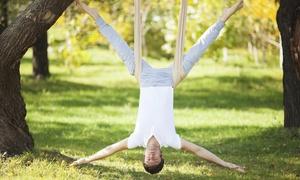 Alison Biondi's Gymnastics, Llc: An Aerial Yoga Class at Alison Biondi's Gymnastics, LLC (50% Off)