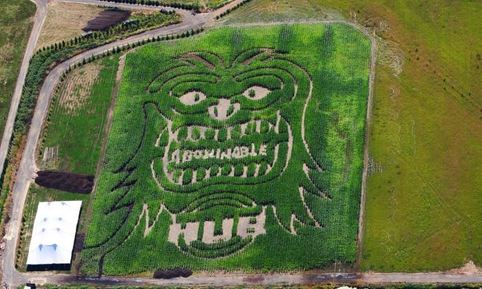 Bella Organic Pumpkin Patch - Sauvie Island: Admission for Two to Regular Corn Maze at Portland Pumpkin Farm or Haunted Corn Maze on 10/31 (50% Off)