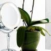 Danielle Chrome Revolving LED Vanity Mirror