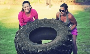 Gym Rats: Two, Four, or Six Weeks of Unlimited Boot-Camp Classes at Gym Rats (Up to 73% Off)