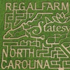 Up to 50% Off Corn-Maze Visit