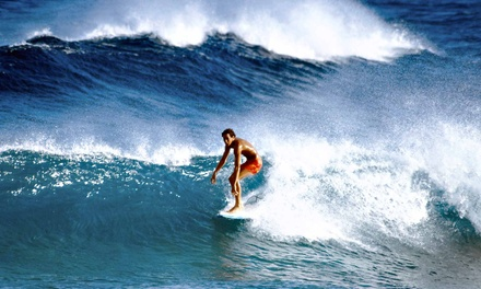 One-Day Surfboard and Gear Rental for One or Two at Live To Surf (Up to 65% Off)
