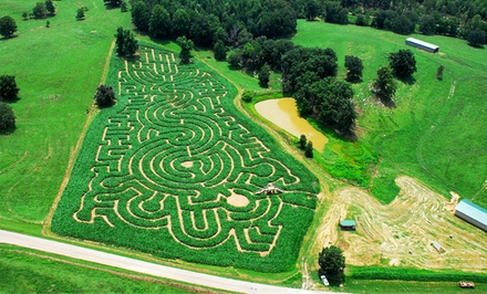 Corn Maze and Haunted House Admission for One or Two at North Georgia Corn Maze (42% Off)