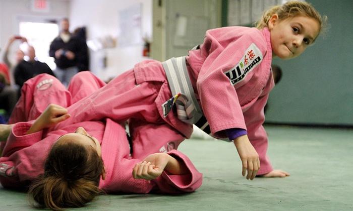 Top Level Martial Arts - Cuyahoga Falls: $85 for $169 Groupon — Top Level Martial Arts