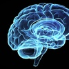 Up to 78% Off Brain-Fitness Training