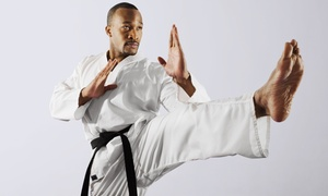 Westchester Martial Arts Academy: 3, 5, or 10 Martial Arts or Self-Defense Classes at Westchester Martial Arts Academy (Up to 83% Off)