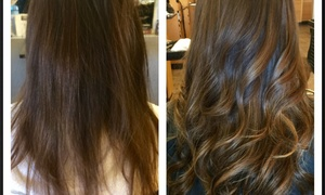 Hair by Holly: Up to 55% Off Women's Haircut with Color at Hair by Holly