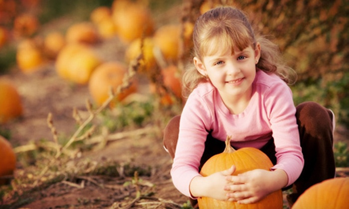 Eggleston Garden Center - Colonial Place/Riverview: $7 for a One Straw-Maze Admission and One Pumpkin at Eggleston Garden Center ($15 Value)