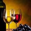 Degustazione vino guidatae prodotti tipici delle Langhe