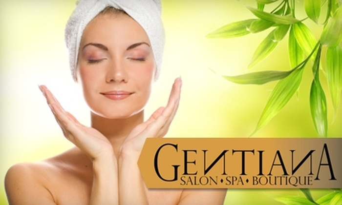 Gentiana Salon Spa Boutique - Peabody: Salon and Spa Services at Gentiana Salon Spa Boutique in Peabody. Choose from Three Options.