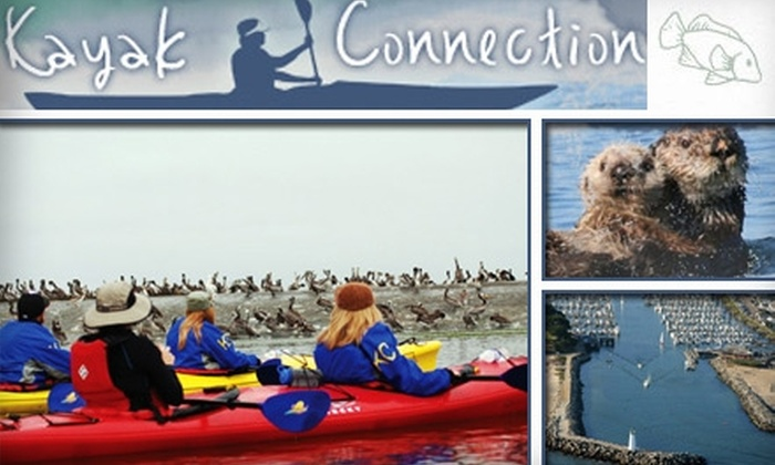 Kayak Connection - Santa Cruz: $25 for a Three-Hour Guided Tour with Kayak Connection