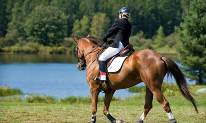 Horse Senses - Hadley: $45 for Two Private 60-Minute Horseback-Riding Lessons at Horse Senses in Goodrich ($100 Value)