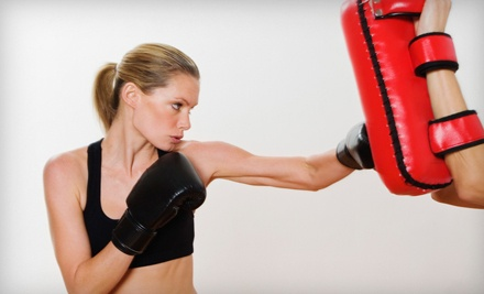 5-Class Martial-Arts Package (a $100 value) - Shaku Family Martial Arts in Kingston