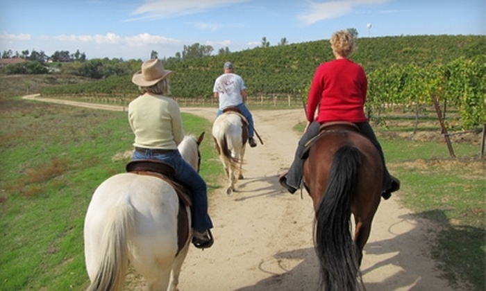 Wine Country Trails by Horseback - Temecula: $150 for a Couples Wine Tasting, Lunch, and Horseback Riding at Wine Country Trails by Horseback in Temecula ($300 Value)