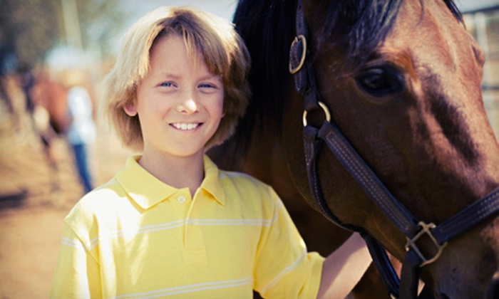 Hoof Beats Stable - Perry: One, Three, or Five One-Hour Horseback-Riding Lessons at Hoof Beats Stable (Up to 63% Off)
