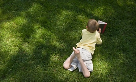 My Lawn Guys: 1-Time Lawn Mowing - My Lawn Guys in