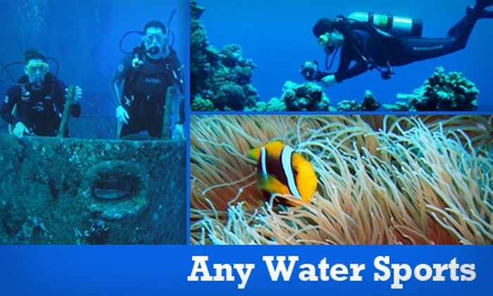 Any Water Sports - San Jose: $10 for a Discover Scuba-Diving Course at Any Water Sports