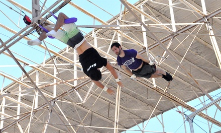 Flying Trapeze Session at Circus Harmony Flying Trapeze Center – Union Station (Up to 59% Off)