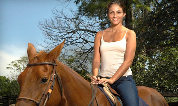 Happy on Hooves - Hampstead: Horseback Trail Ride for Two or Four at Happy on Hooves in Hampstead (Up to 56% Off)