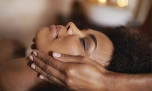 Paris Alexander Day Spa: One or Three Microdermabrasion Facials at Paris Alexander Day Spa (Up to 52% Off)